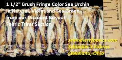 Brush Fringe Color Sea Urchin